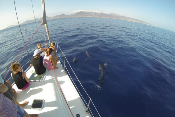Navega en velero por las aguas de Fuerteventura